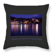 I Reflect On Beauty Of The World Throw Pillow