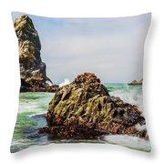 I Sea Said The Starfish Throw Pillow