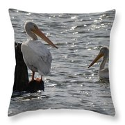 I See You 4921 Throw Pillow
