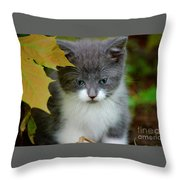 I See You Throw Pillow