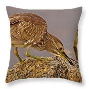 P2035053 I See You Throw Pillow