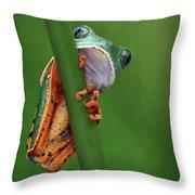I See You - Tiger Leg Monkey Frog Throw Pillow