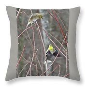 I See You Two Birds In Flight Throw Pillow