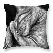 I Shall Call Him Stringy Throw Pillow by Shevon Johnson