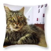 I Smell Mouse Throw Pillow
