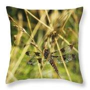 I Spy A Dragonfly Throw Pillow