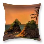 I Stand Corrected Throw Pillow