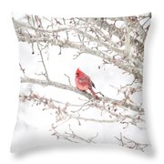 I Tend To Attract Attention Throw Pillow