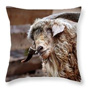 I Think I Am Having A Good Hair Day. What Do You Think? Throw Pillow