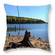 I Used To Be A Tree Throw Pillow