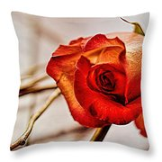 I Wait For The Sun Throw Pillow