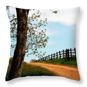 I Walk The Gravel Road Throw Pillow