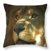 I Want Some Throw Pillow