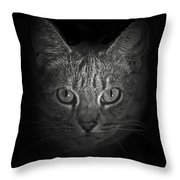 I Want Something Throw Pillow