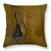 I Want To Be A Fruit Tree Throw Pillow