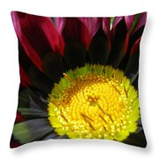 I Was Struck By Her Beauty Throw Pillow