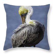 I Will Get It Throw Pillow