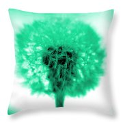 I Wish In Aqua Throw Pillow