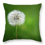 I Wish Throw Pillow