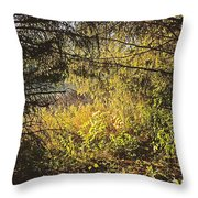 I Would Be The Shadow Of Your Light Throw Pillow
