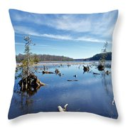 Iago Springs 9500 Throw Pillow