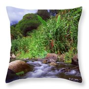 Maui Hawaii Iao Valley State Park Throw Pillow