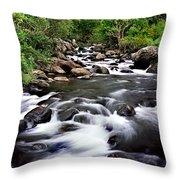 Iao Valley Stream Throw Pillow