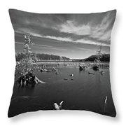 Iargo Springs 9502 Throw Pillow