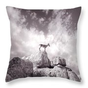 Ibex -the Wild Mountain Goats In The El Torcal Mountains Spain Throw Pillow