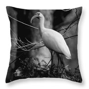 Ibis In Black And White  Throw Pillow