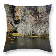 Ibis In Flight Throw Pillow
