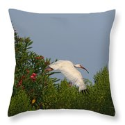 Ibis In The Oleander Throw Pillow