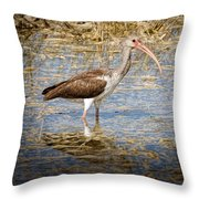 Ibis In The Rough Throw Pillow