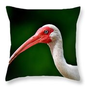 Ibis Portrait Throw Pillow