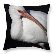 Ibis Pose Throw Pillow