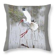 Ibis Soft Water Landing Throw Pillow