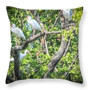Ibises In A Tree Throw Pillow