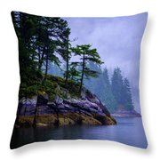 Ice Age Wonder Throw Pillow
