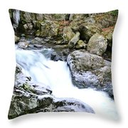 Ice And Moss Throw Pillow