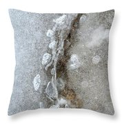 Ice And The Beach Three  Throw Pillow