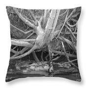 Twisted Roots  Throw Pillow