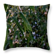 Ice Art 51 Throw Pillow