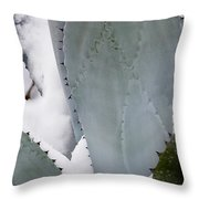 Ice Blue Agave Throw Pillow