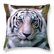 Ice Blue Eyes Of The Tiger Throw Pillow
