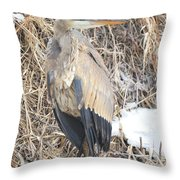 Ice Cold Heron Throw Pillow