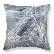 Ice-cold Morning Fantasy Throw Pillow