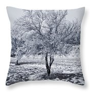 Ice Covered Tree Throw Pillow