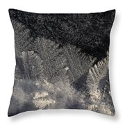 Ice Crystals Form Feather Shapes On Ice Throw Pillow