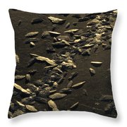 Ice Crystals Form On Frozen Creek Throw Pillow