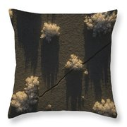 Ice Crystals Form On Overflow Throw Pillow